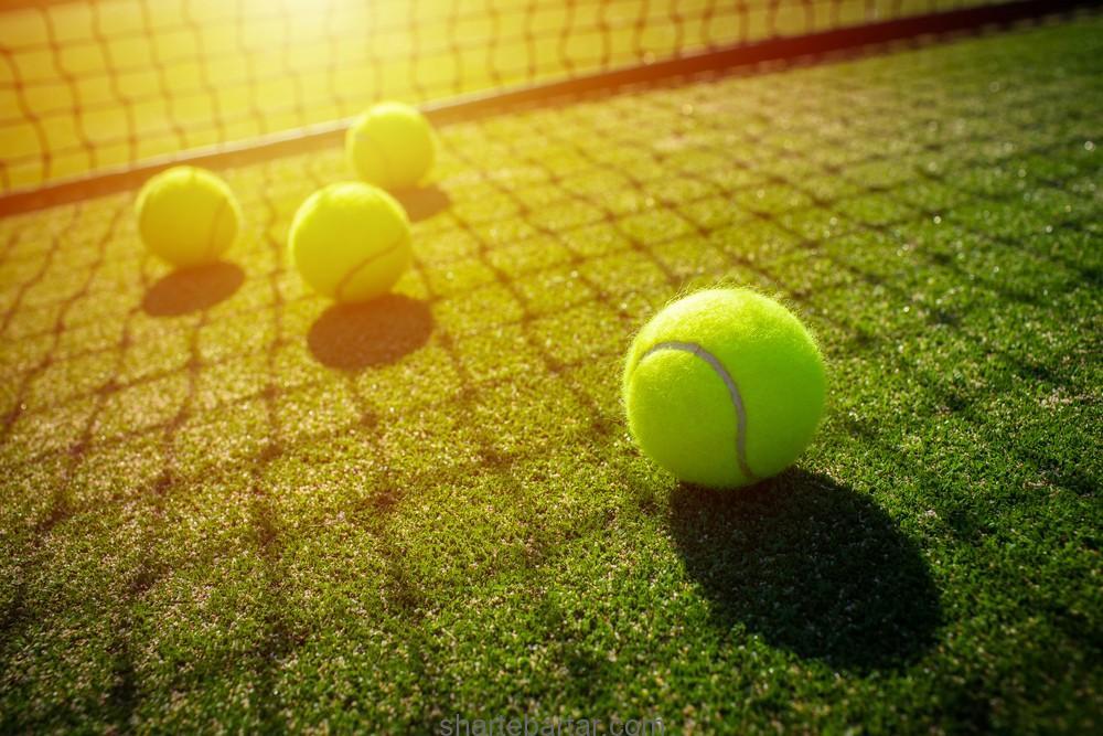 بازی تنیس را یاد بگیرید